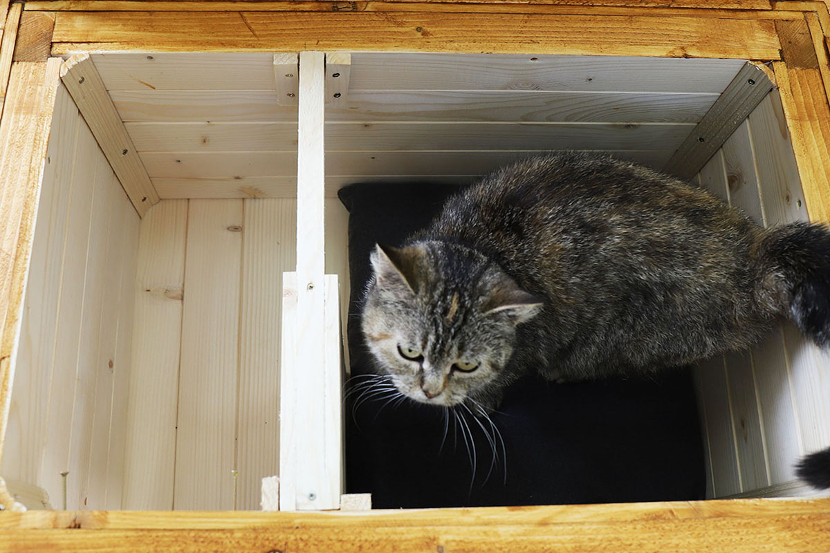 Zateplený domček pre mačku
