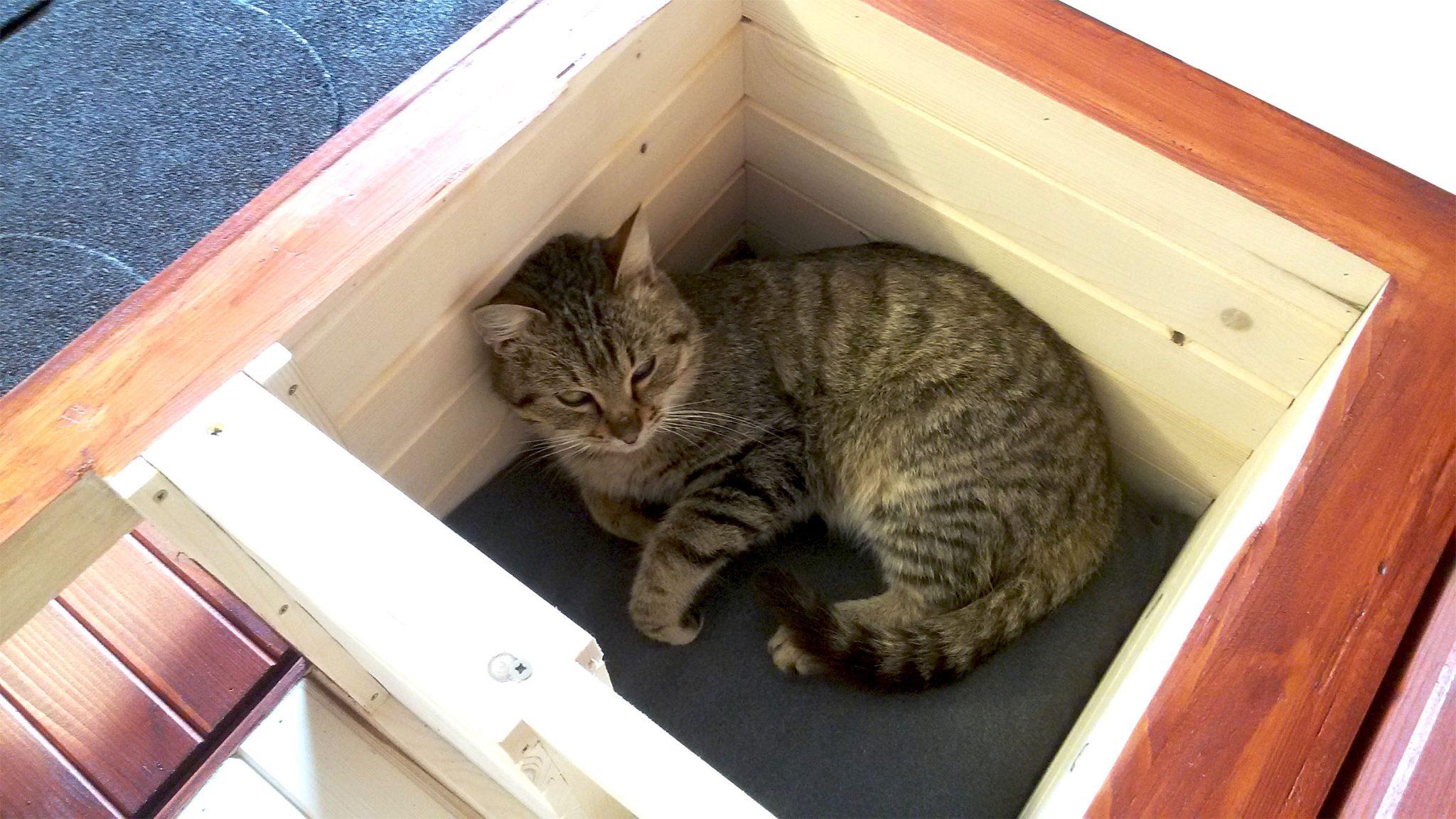 Domček pre mačku DARLING
